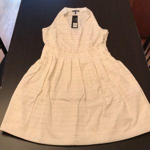 NWT daisy Fuentes dress